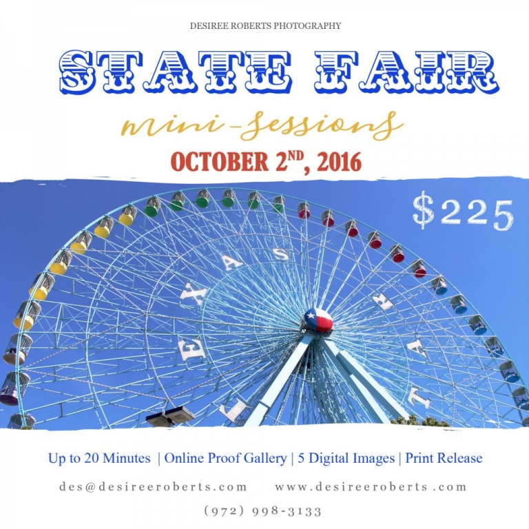 20162STATE FAIRMinisMarketingBoard-5x5